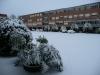 Nevicata 4.02.2012